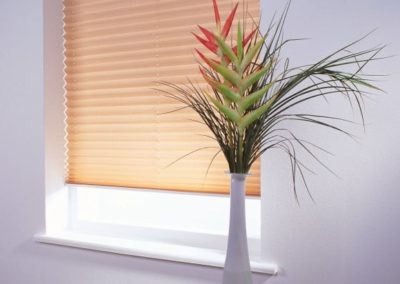 Contrasting Pleated Blinds